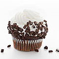 Curly Q Chocolate Cupcake by Andee Design