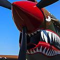 Curtiss P-40n-5 Kittyhawk by Garry Gay
