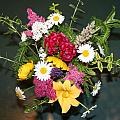 Cut Flowers by Barbara S Nickerson