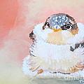 Cute Baby Birdy by Phyllis Kaltenbach