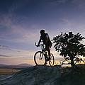 Cyclist At Sunset, Northern Arizona by David Edwards