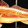 Cypress Red Fish by Douglas Snider