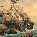 Cypress Tree by Carolyn Jarvis