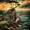 Cypress Tree In Storm by Laura Iverson