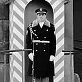 Czech Soldier On Guard At Prague Castle by Christine Till