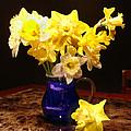 Daffodil Bouquet by Steve Karol