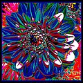 Dahlia With Intense Primaries Effect by Rose Santuci-Sofranko