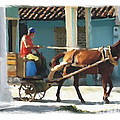 daily chores small town rural Cuba by Bob Salo