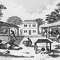 Daily Life For Enslaved Africans by Everett