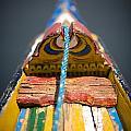 Dal Lake, Srinagar, Kashmir, India by David DuChemin