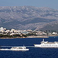 Dalmatian Coast by Carla Parris