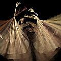 Dancers by Rich Stedman