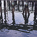 Dancing Pilings by Ruth H Curtis