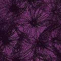 Dandelion Abstract by Ernie Echols