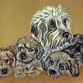 Dandie Dinmont Terriers by Patricia Ivy