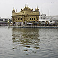 Darbar Sahib And Sarovar Inside The Golden Temple by Ashish Agarwal