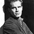 Dark City, Charlton Heston, 1950 by Everett