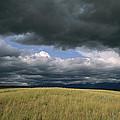 Dark Clouds Gather Over A Prairie by Annie Griffiths