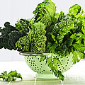 Dark Green Leafy Vegetables In Colander by Elena Elisseeva