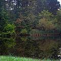 Dark Lake 1 by Douglas Barnett