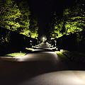 Dark Pathway by Wanda J King