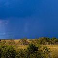 Dark Storm Over The Everglades by Ed Gleichman