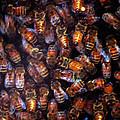 Dark Swarm Attack by LeeAnn McLaneGoetz McLaneGoetzStudioLLCcom
