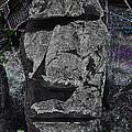 Dark Tiki by Bill Owen