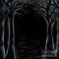 Dark Woods by Kristina Sale