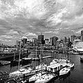 Darling Harbor- Black And White by Douglas Barnard