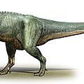 Daspletosaurus Torosus, A Prehistoric by Sergey Krasovskiy