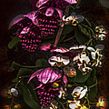 Davinci Orchid Wall by Jill Balsam