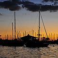 Davis Island Yacht Club by David Lee Thompson