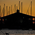 Davis Islands Yacht Club At Sunset by David Lee Thompson