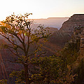 Daybreak At Mather Point by Adam Pender