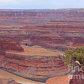 Dead Horse Point State Park by Jack Schultz