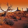 Dead Tree In Desert Monument Valley by Don Hammond