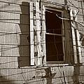 Dead Window by David Milliner