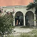 Death Of A Prom Queen Bellemont Baton Rouge by Lizi Beard-Ward