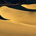 Death Valley And Photographer In Morning Sun by William Freebillyphotography