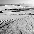Death Valley Dunes 11 by Bob Christopher
