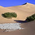 Death Valley Salt Flat by Dave Mills