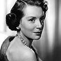 Deborah Kerr, Ca. 1950s by Everett