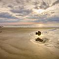 Debris On The Beach - Hunting Island Sc by Bill Swindaman
