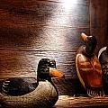 Decoys In Old Hunting Cabin by Olivier Le Queinec