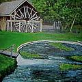 Deleon Springs by Lynn Carlson