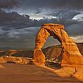 Delicate Arch by Joyce Specht