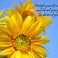 delight yourself in the Lord... by J L