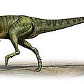 Deltadromeus Agilis, A Prehistoric Era by Sergey Krasovskiy