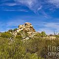 Desert Boulders by Scott Pellegrin